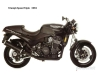 Triumph Speed Triple 900 1994 - 1996